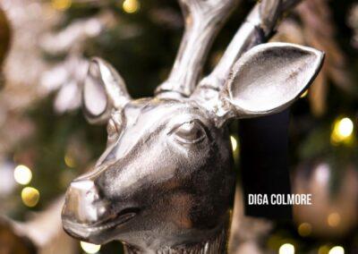 Diga Colmore Live in Luxury