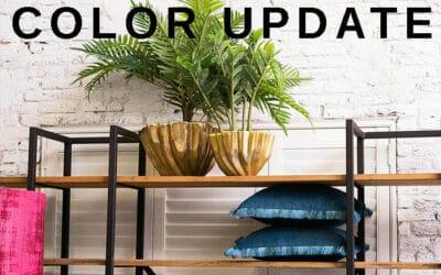 Trendy Color Update